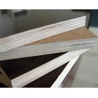 China factory price 18mm film faced plywood poplar/birch plywood on sale