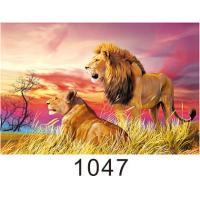 Buy Custom 3D Lenticular Printing 60*80cm / Wall Poster 3D Animals Photos at wholesale prices