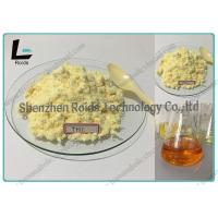 Quality CAS 23454-33-3 Tren Anabolic Steroid Trenbolone Hexahydrobenzylcarbonate for sale