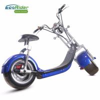 Quality Two Wheels Electric Scooter Citycoco Battery Removable Electric Scooter for sale