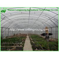 Quality Used Agriculture Greenhouse for sale