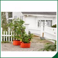 Quality Felt Weatherproof Plant Grow Bags For Home / Garden Grow Bags For Plants 12X24 Grow bags Felt material for sale
