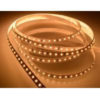 Quality Epistar SMD RGB Led Tape Light Colour Changing 12W/M With 5 Meters , FPC Body Material for sale