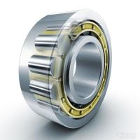 Quality Single Row Cylindrical Roller Bearings Open Seals 50mm Bore N210-E-TVP2 for sale