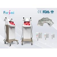 China China offer hot saled 3 handles best cryolipolysis fat freeze slimming machine for sale on sale