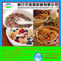 Buy Shanghai CE Certificate Automatic Roasted Breakfast Cereal Corn Flakes Extrusion Machine at wholesale prices