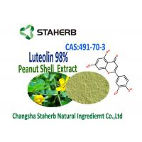 China Luteolin 98% Extract From Peanuts Extract Powder 491-70-3 Herbal Plant Extract on sale