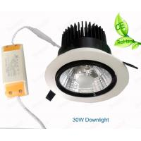 Quality COB LED  Recessed Downlight 20W 30W Adjustable Angle For Lotte Shop Brightness Lamp for sale