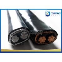 China Concentric PE PVC Insulated Cable 2 3 4 Core Solid / Stranded Conductor on sale