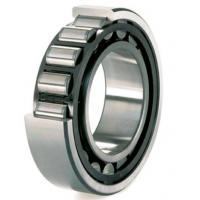 Quality Single Row Full Complement Roller Bearing C3 for Peroleum Machinery SL183080-TB for sale