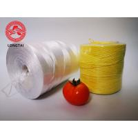 Quality UV Protection Colorful Agriculture PP Tomato Twine for sale