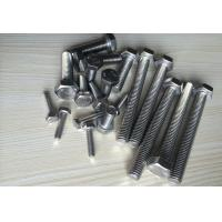 Quality Durable Stainless Steel Bolts Hexagonal Headed Bolt Injection Mould Plastic Part Process for sale