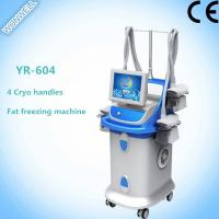 Buy Fat Freezing Multi-functional Slimming Machine with 4 handles for salon at wholesale prices