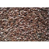 Quality brown flax seeds for sale