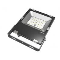 Energy Saving IP65 Waterproof and CRI83 30W outdoor LED flood light for sale