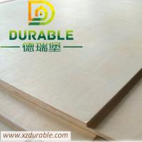 China High Quality Birch Plywood BB/CC grade for furniture from XuZhou Durable on sale