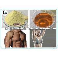 Quality Injectable Anabolic Steroids CAS 10161-33-8 , Trenbolone Enanthate 100 For Muscle Gain for sale