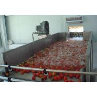 Quality Industrialized Fruit And Vegetable Processing Line For Date Washing And Elevator for sale