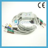 Burdick one piece 10 lead EKG cable with leadwires