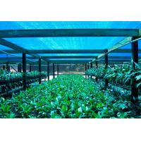 China Greenhouse Shade Net ,Agricultural Shade Cloth For Flower Farm on sale