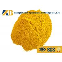 Buy Plant Corn Protein Powder / Natural Protein Supplements No Visible Impurity at wholesale prices
