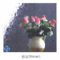 Quality Moran Patterned Glass for sale