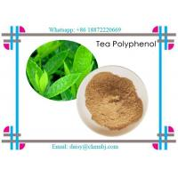 Buy cheap Brown Yellow Natural Vitamin Powder Natural Tea Polyphenols 99.9% for Health from wholesalers