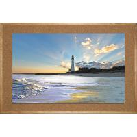Quality (A-1)3D picture with frame for sale