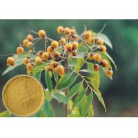 Quality Yellow Brown Powder Soapberry Extract Cosmetic Grade For Bath Cream / Shampoo for sale