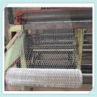 Buy cheap 1/2 3/4 5/8 small hole chicken wire mesh/hexagonal wire mesh/ 1