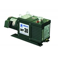 Quality BSV30 Vane Type Vacuum Pump 30 m3/h for Refrigerator Refrigerant Charging for sale