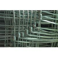China Hot Dipped Galvanized Steel Grassland Field Wire Fence With 1.6 mm - 3.5 mm Wire Gauge on sale