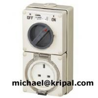 Quality Combination switched socket IP66 for sale