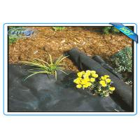 Buy cheap Anti UV Non Woven PP Ground Cover / Weed Control Fabric / Landscape Fabric from wholesalers