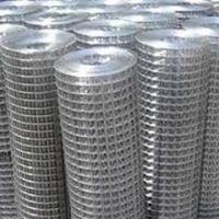 China stainless steel welded wire mesh selling lead on sale