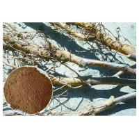 Apple Tree Root Pure Natural Plant Extracts , Extraction Of Medicinal Plants CAS 60 82 3