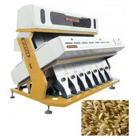Quality Color Selector Machine For Cashew And Nuts , Grain Color Sorter ISO9001 for sale