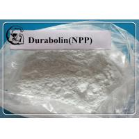 Quality NPP / Durabolin /  Nandrolone phenylpropionate Raw Steroid Powders for Bodybuilding CAS 62-90-8 for sale