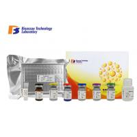 Quality Sandwich Porcine ELISA Kit Syndecan - 1 Customized With 2 Hours Assay Time for sale