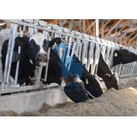 China Carton Steel Locking Feed Barriers , Adjustable Metal Cattle Feeding Gates on sale