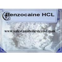 Quality Local Anesthetic Ingredient Benzocaine Hydrochloride 99% High Purity CAS 23239-88-5 for sale