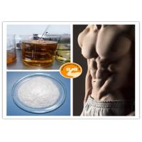 Quality Lean Mass Testosterone Isocaproate Test Iso EINECS 239-307-1 ISO9001 Certification for sale