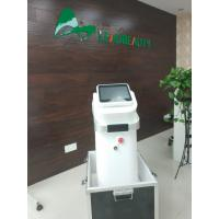Quality CE  Wavelength 755 808 1064 Medical Equipment 600W Beauty 808 nm 10Hz Beauty Machine Laser Diode 808 nm for sale