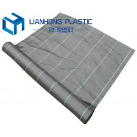 Quality high quality export America pp weed control cover /weed barrier/ground covermat for sale