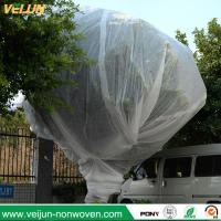 Quality Nonwoven tree protection cover, tree bag/ nonwoven tree protection bag, UV resisted tree ocver for sale