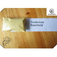Quality CAS 472-61-546 Trenbolone Steroid / Trenbolone Enanthate 97.0~103.0% Muscle Bodybuilding Steroid Hormone for sale