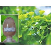 Quality Ginkgo Biloba leaf Extract 24% for sale