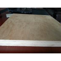China Xuzhou Chinese Professional Plywood Manufacturer on sale
