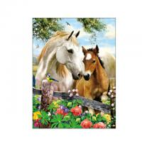 Quality Running Black Horses Image 3D Lenticular Pictures For Advertisement for sale