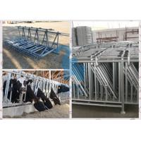Quality Q235 Material Cow Headlock And Feed Panel For Livestock Plant for sale